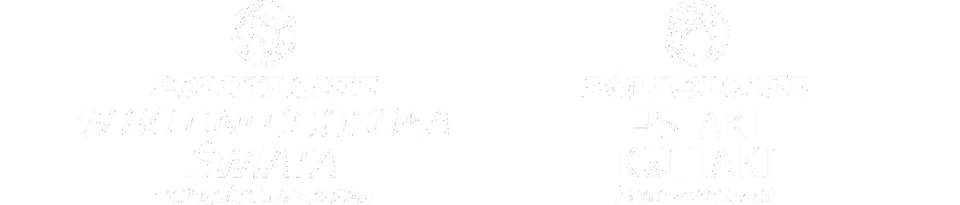 polkolonie-2020-logo-poprawka-2